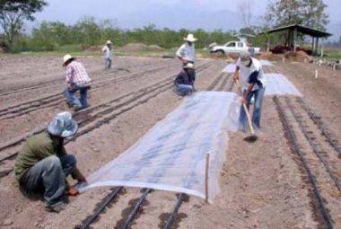 Cómo-se-solariza-el-terreno